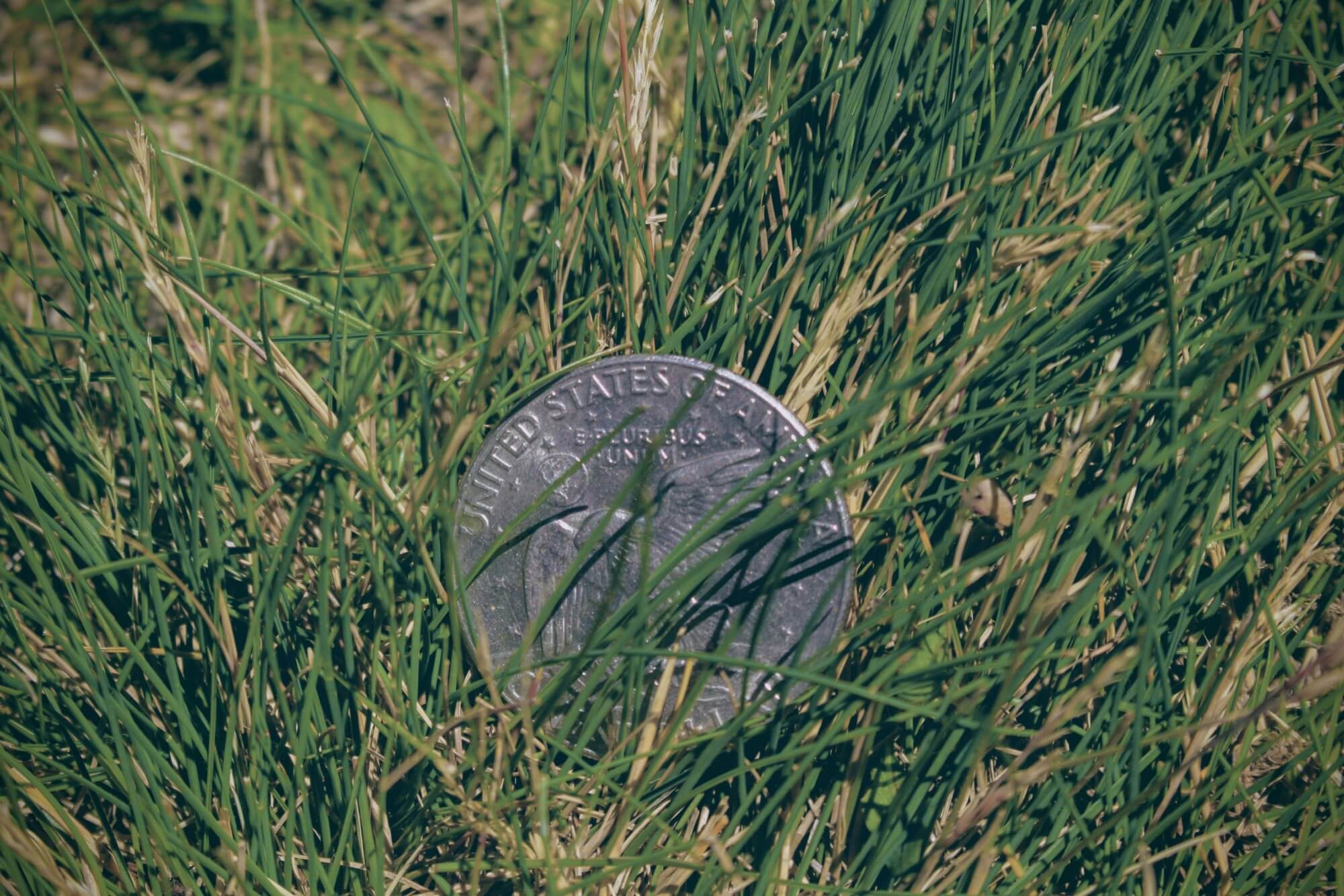 Quarter on its side in the grass