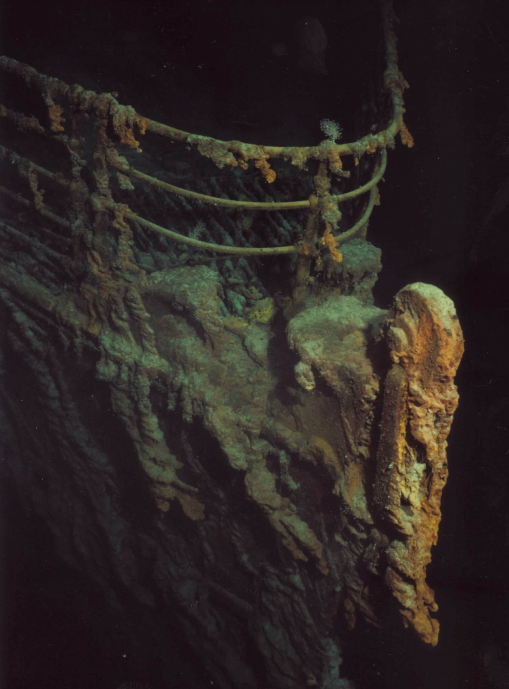 Sunken bow of ship, covered in rust and barnacles